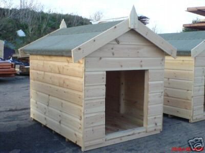 large-dog-kennel